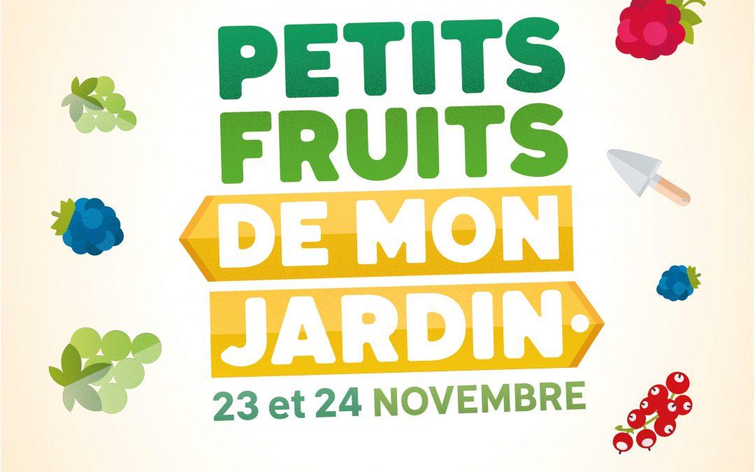 Petits fruits… grands effets: Ecolo sensibilise la population à une production locale et de qualité