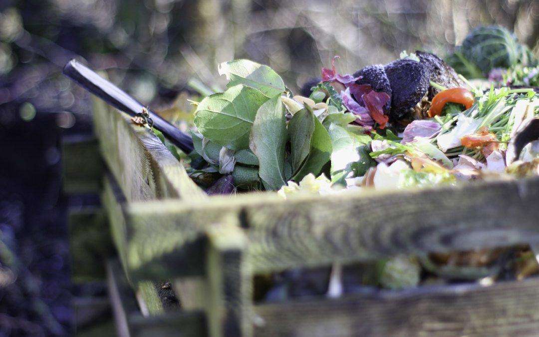 Zéro déchet : la pratique du compostage à domicile